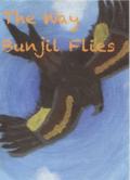 The Way Bunjil Flies